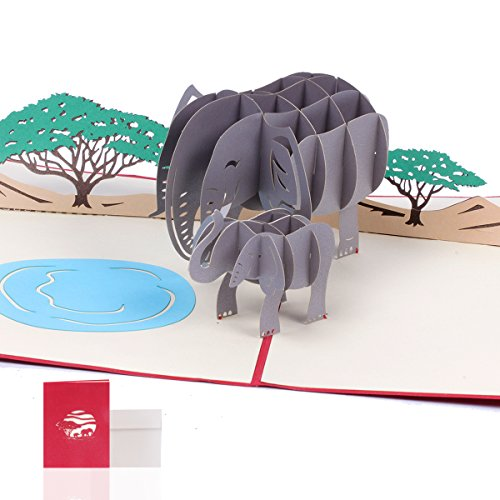 3d Pop Up Card Graduation Birthday Gifts 3d Elephant Greeting